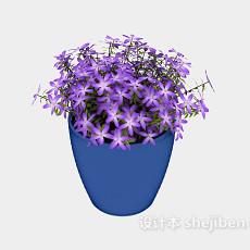 室内盆栽盆景花3d模型下载