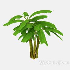 芭蕉树3d模型下载