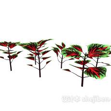 彩色叶植物3d模型下载