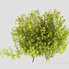树木枝条3d模型下载