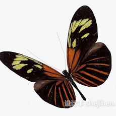黑色蝴蝶3d模型下载