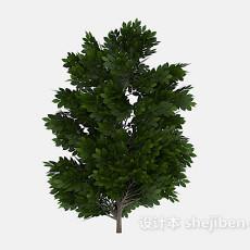 多枝丫绿树植物3d模型下载