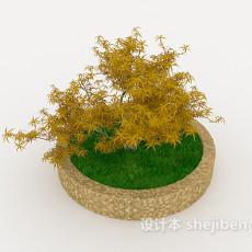 室外盆栽植物3d模型下载