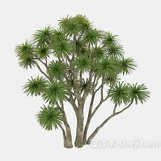多枝干树木3d模型下载