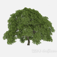 路标植物大树3d模型下载