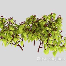 樟树树枝3d模型下载