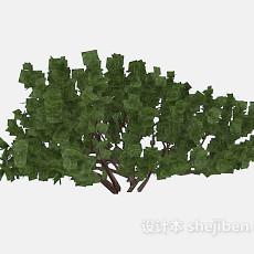 大枝干树木3d模型下载