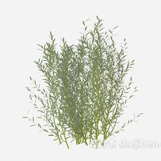 绿叶树苗3d模型下载