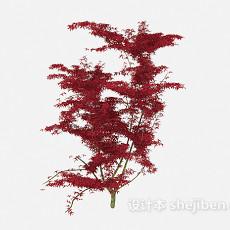 红叶植物树木3d模型下载
