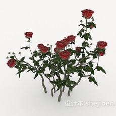 带刺玫瑰3d模型下载
