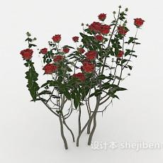 玫瑰花丛3d模型下载
