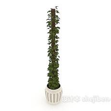 园艺盆栽3d模型下载