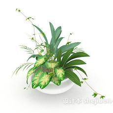 宜家盆栽3d模型下载