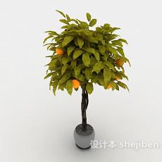 金桔盆栽3d模型下载