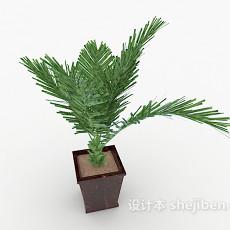 装饰性铁树盆景3d模型下载