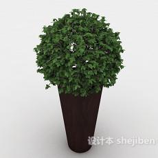 室内盆景3d模型下载