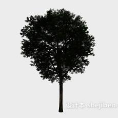 庭院圆大树3d模型下载