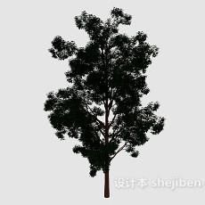 森林大树3d模型下载
