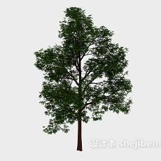 森林绿高树3d模型下载