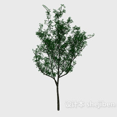 公园树3d模型下载