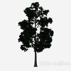 室外大树3d模型下载