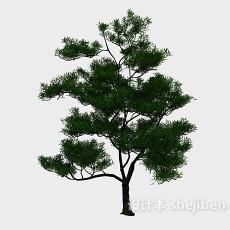 室外阔叶树3d模型下载