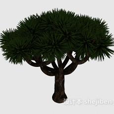 观赏型松树3d模型下载