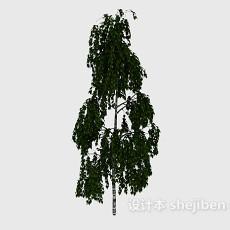 个性高树3d模型下载