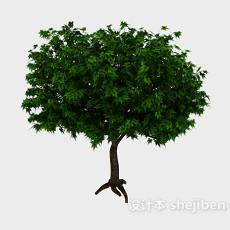 翠绿色大树3d模型下载