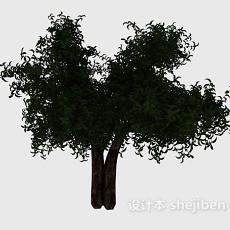 个性大树3d模型下载