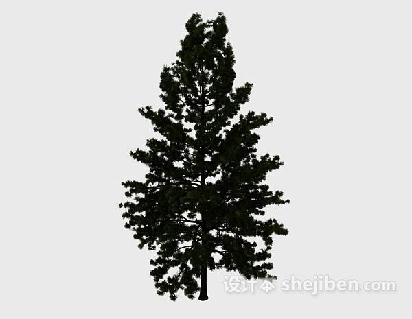 深绿色高树
