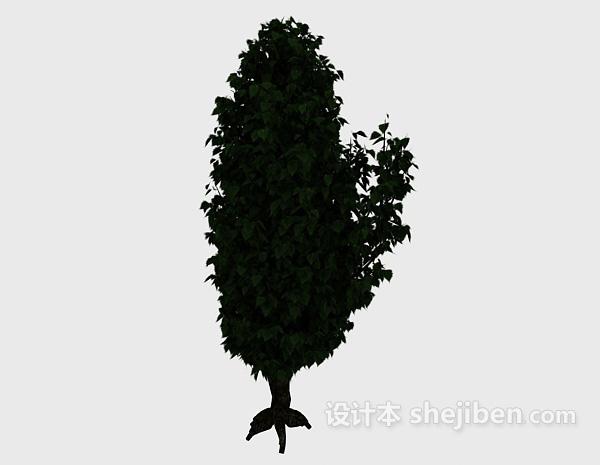 深绿色植物