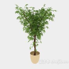 环保盆栽植物3d模型下载
