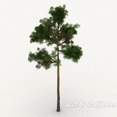 室外树3d模型下载