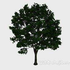 茂密树3d模型下载