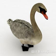 灰色鸭子3d模型下载