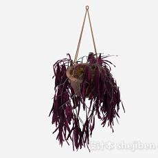 紫色挂篮植物3d模型下载