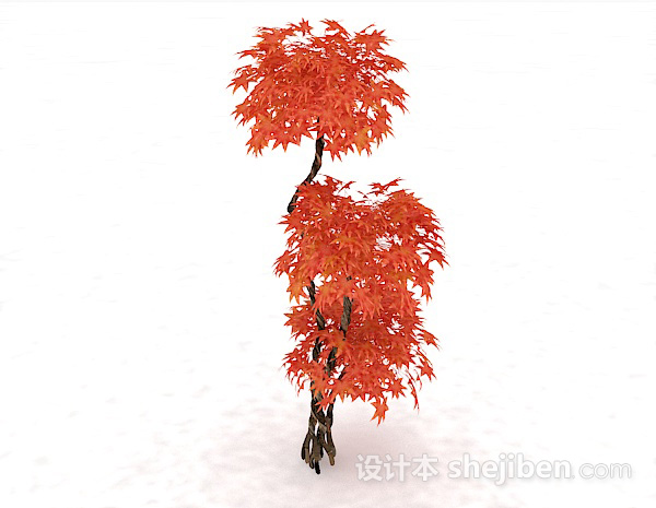 3D红色枫树模型