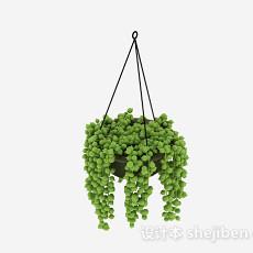 绿色挂篮植物3d模型下载