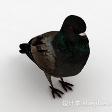 黑色鸽子3d模型下载