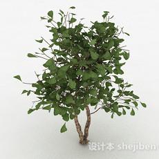 家庭观赏型树3d模型下载