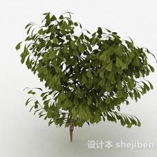 倒卵形树叶灌木树3d模型下载