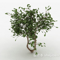 圆形树叶家庭观赏型树3d模型下载