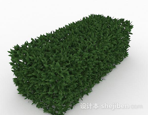 披针形树叶灌木方形造型