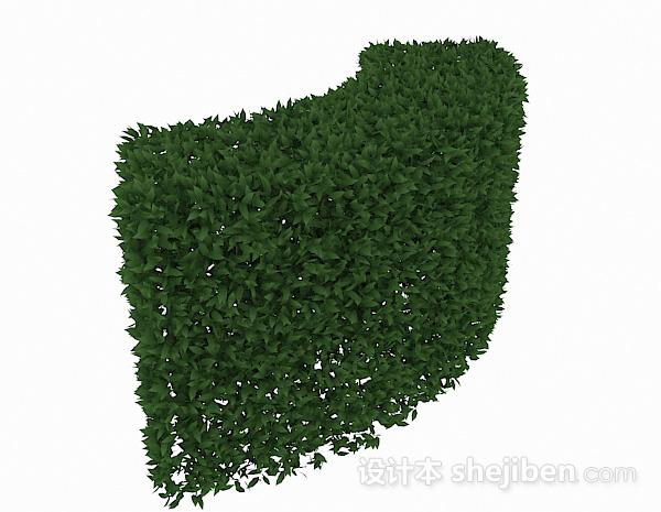 披针形树叶灌木弯曲造型