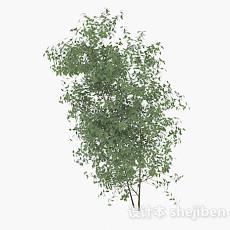 低矮绿色树枝3d模型下载