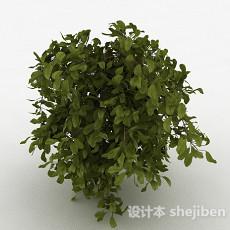 圆形树叶观赏型树木3d模型下载
