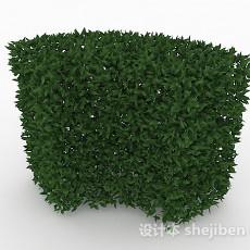 披针形树叶灌木林3d模型下载