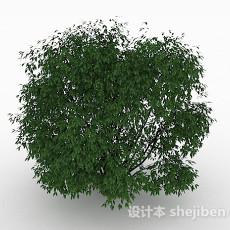 绿色小叶子观景树3d模型下载