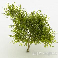 嫩黄色树叶观赏植物3d模型下载